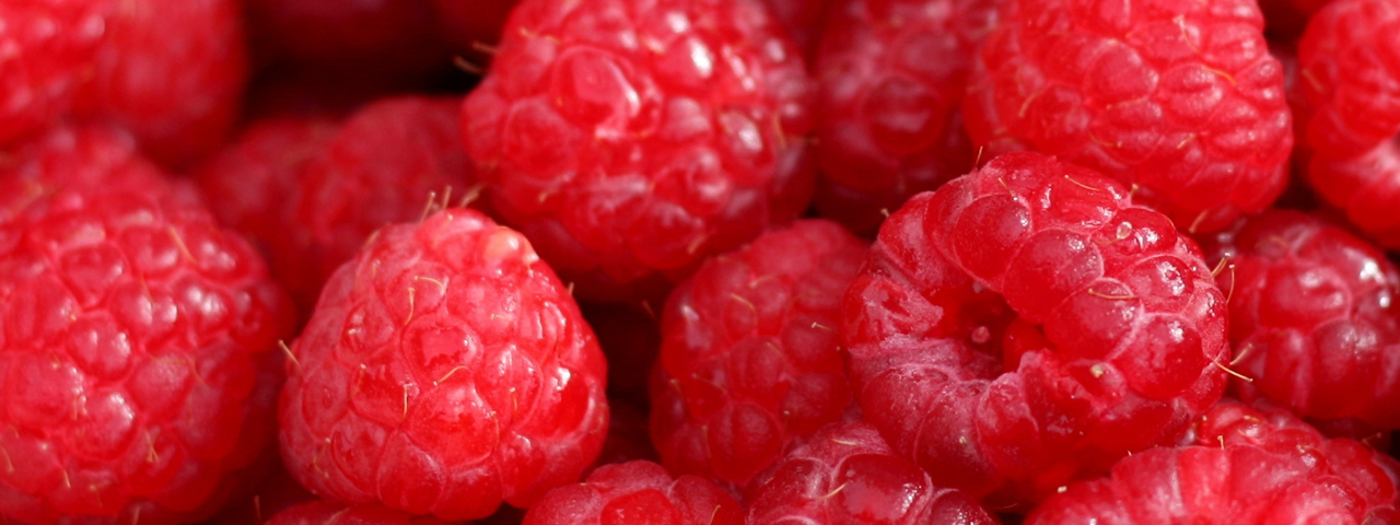 Fresh raspberries, full of healthy vitamins and amino acids. These are part of our Nutritional Foods range.