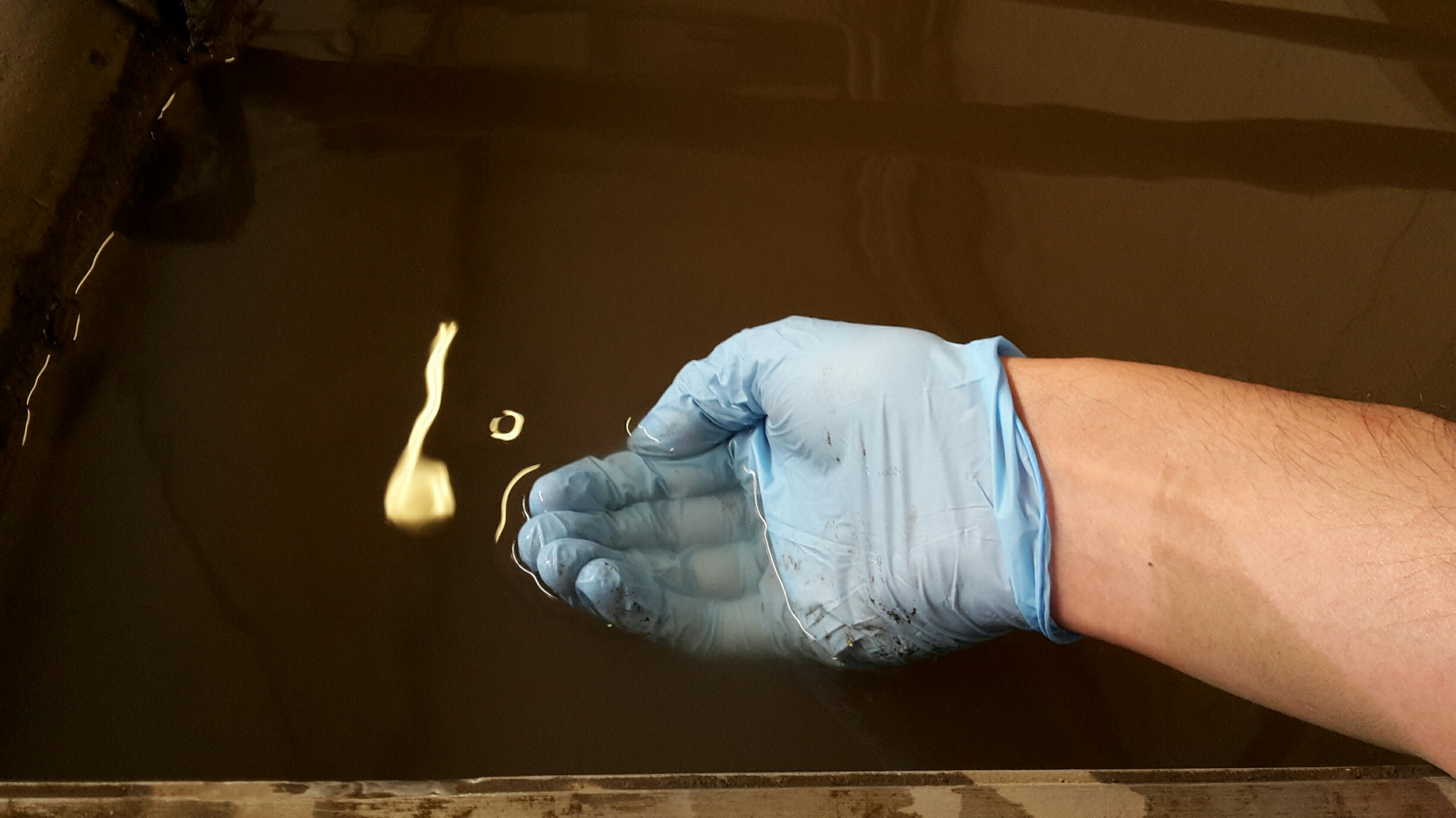Hand in blue glove and clear wastewater, a result of our water treatment solution