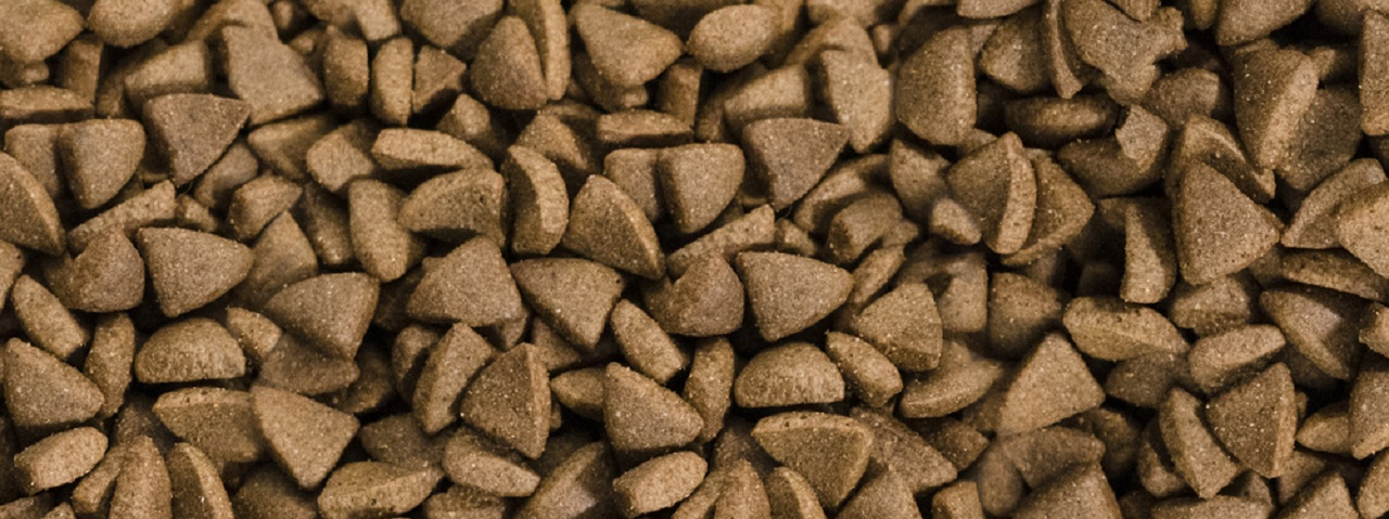 a collage of hard, triangle shaped, pellet style dog food.
